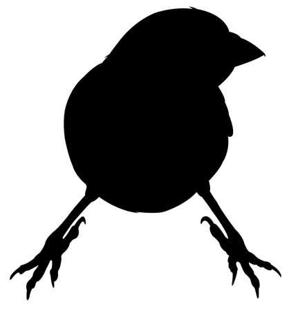 sparrow: Sparrow silhouette vector