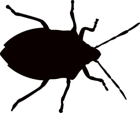 an insect body silhouette vector  イラスト・ベクター素材