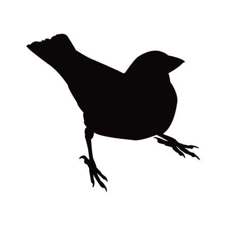 a sparrow body silhouette vector Vettoriali