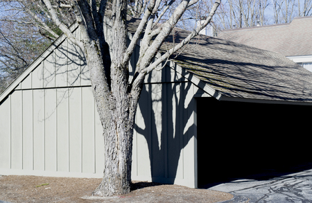 Tree casting shadows on wooden structure Stock Photo