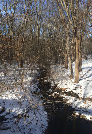 Melting creek in Concord,  Massachusetts