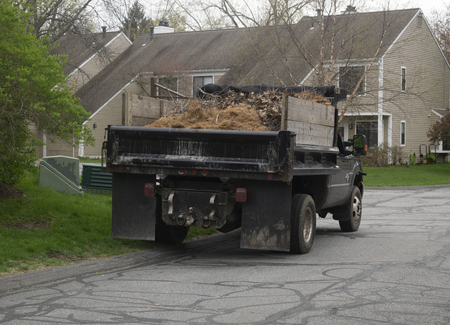 Truck with dead brush