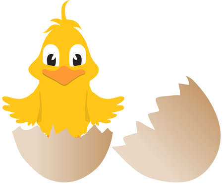 coming out: Yellow Cartoon Style Easter Chick Coming Out From Broken Egg Illustration