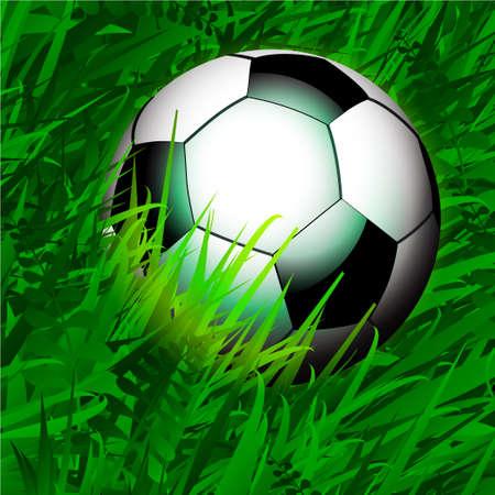 grass close up: Close Up Football Soccer Over Spring Green Grass