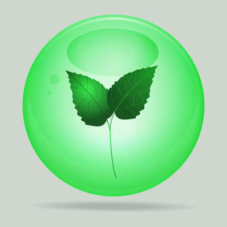 leafs: Green Glass 3D Sphere with Green Leafs Inside Background Illustration