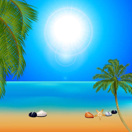 Tropical Sunny Beach Background with Palm Trees Pebbles and Starfish Illustration