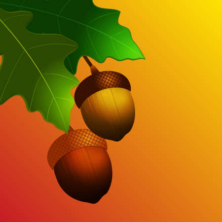 autumn background: 3D Illustration of Autumn Acorn with Leafs Over Yellow and Red Background