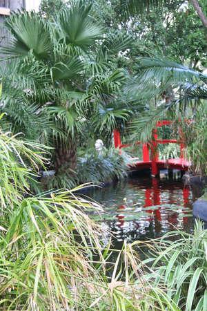 Tropical scene  版權商用圖片
