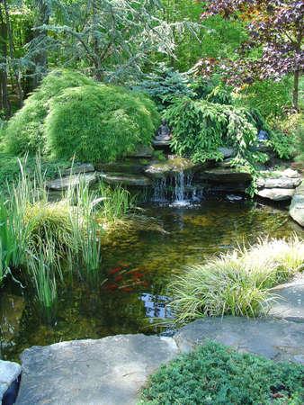 cascade: Pond