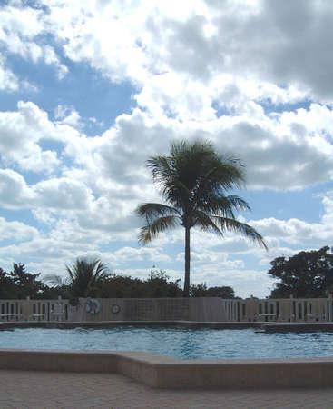 key biscayne: Pool, Key Biscayne