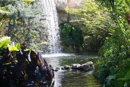 Waterval, landschap, Parrot Jungle Island