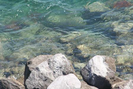 key biscayne: Rocks at Key Biscayne beach