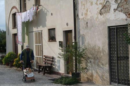 Italy, Pisa Stok Fotoğraf