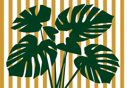 monstera: Monstera deliciosa floral background Stock Photo