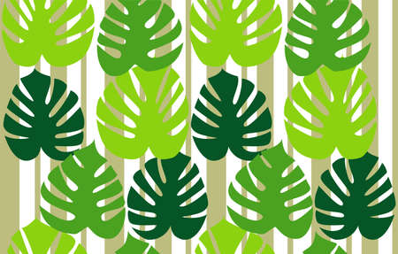 philodendron: Monstera deliciosa floral background vector