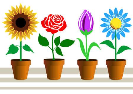 Conjunto de flores en macetas en blanco