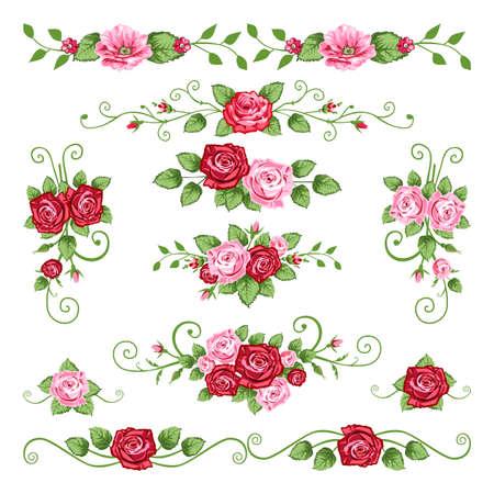 Colección de rosas Ilustración de vector