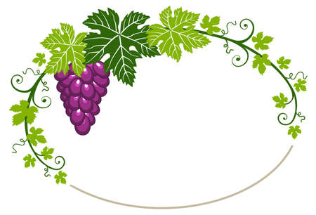 Grapes frame with leaves on white background Ilustracja