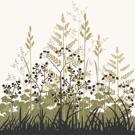 Plants and grasses background
