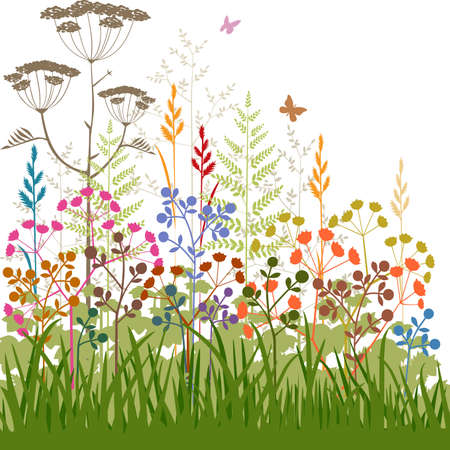 gramineas: Coloridas plantas abstracto y fondo hierbas