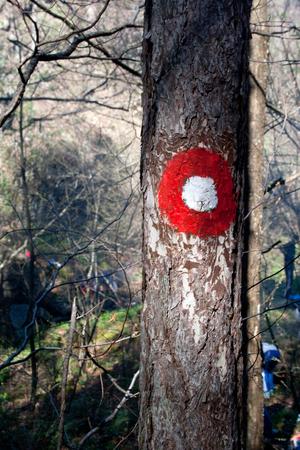 Hiking mark on tree