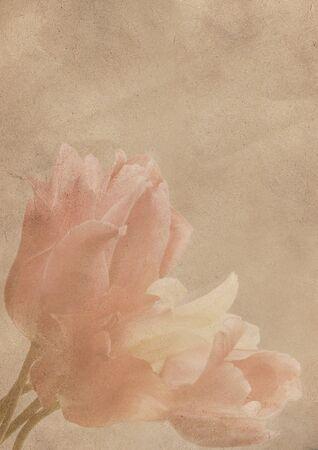 flower postcard old Stock Photo - 10245104