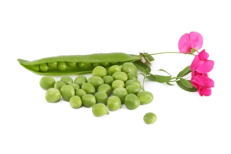 Pod peas and spilling with flowers, isolated Stock Photo