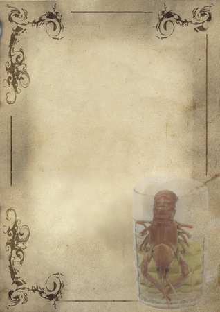 Restaurant; bar beer menu design.Old Styled - beer glass with crayfish photo