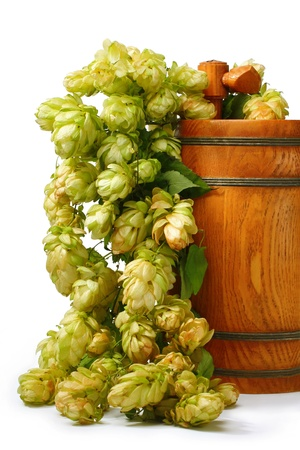 beer barrel: A barrel of beer with hop cones isolated Stock Photo