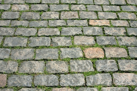 sprouted: paving stone paving slabs and sprouted green grass