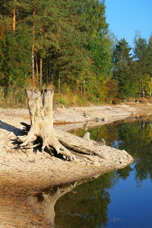River landscape in autumn forest, early morning on a sunny day Stock Photo - 12740869