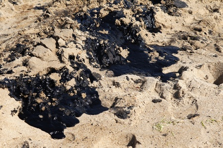oil spill: The sand is covered with oil on the sea shore Stock Photo