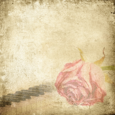 Old music background with rose  Vintage background   photo
