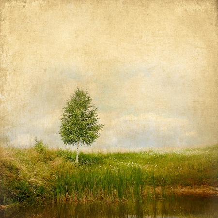 Vintage background summer landscape lonely birch on the lake with texture of paper photo