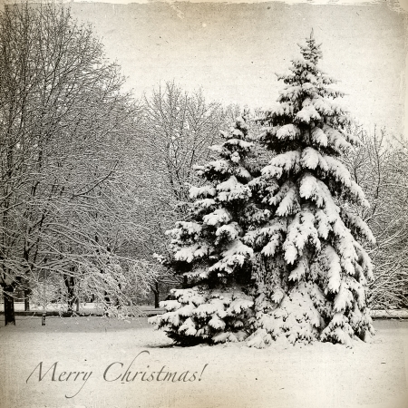 Retro card with Merry Christmas, trees and Christmas trees in snow winter landscape photo