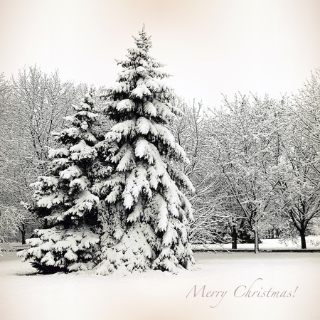 Retro card with Merry Christmas, Winter Landscape photo