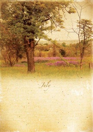 Calendar retro style  July  Vintage summer landscape   photo