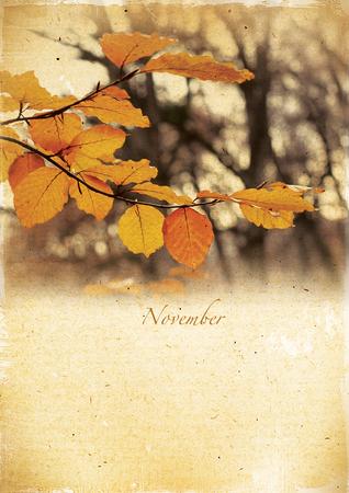 Calendar retro style  November  Vintage autumn landscape   photo