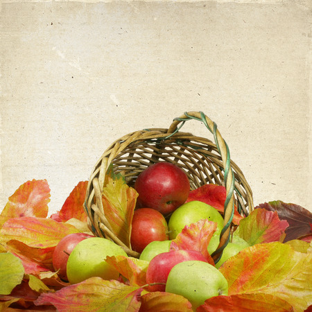 Basket of apples in the autumn leaves on the background of old paper photo