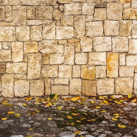 grunge wall background with yellow autumn leaves  photo