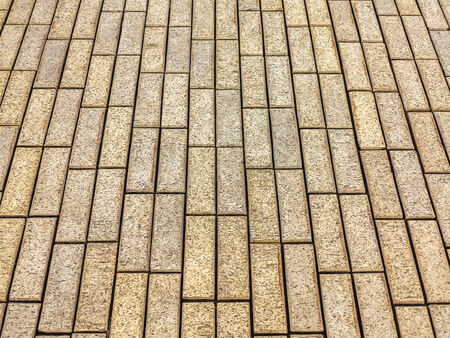 detail of tiles at the street gives a harmonic pattern  photo