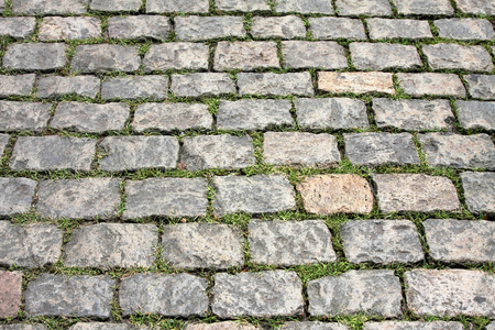viability: Stone pavement with green grass. Texture or background.
