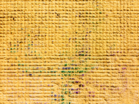 yellows: Concrete, weathered, worn, painted yellows. Landscape style. Grungy Concrete Surface. Great background or texture.