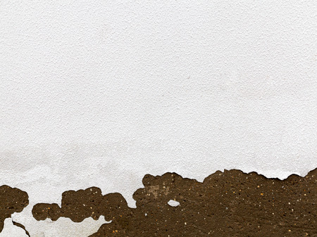 urban decline: Old Peeling Painted Wall. Background texture for all of your project Stock Photo