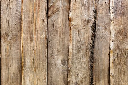 Old wooden planks cracked, green moss on a rustic background photo