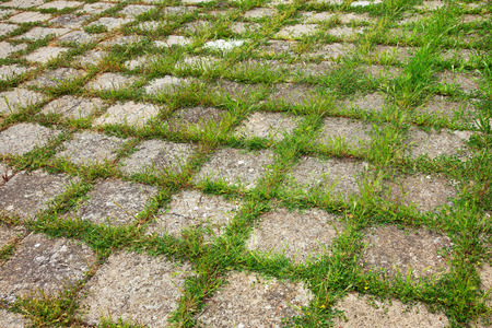 textural: Grungy interlocking concrete pavement with grass growing along its joint for textural background.
