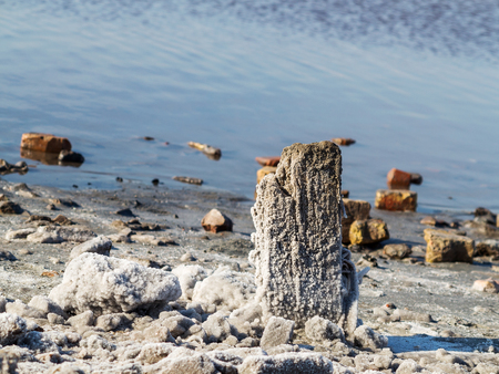 receded: Petrified salt acted on wooden boards in dry estuary, selective focus. Water has receded far into the result of strong summer drought. Ecological catastrophy. Kuyalnik in Odessa, Ukraine. Stock Photo