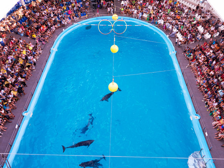 winning mood: ODESSA, UKRAINE - JULY 12, 2015: Ecstatic happy spectators of all ages delight in watching vivid picture Dolphinarium August 12, 2015 in Odessa, Ukraine. Editorial