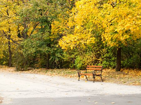 fall landscape: Beautiful authentic landscape of city park in the fall. Varna, Bulgaria