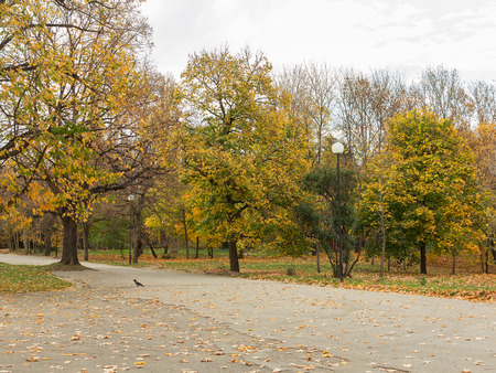 vanish: Beautiful authentic landscape of city park in the fall. Varna, Bulgaria